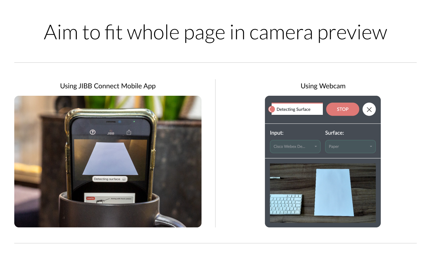 Whole page camera preview